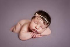 Portrait of  sleeping newborn baby girl. On lavender background Stock Image