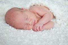 Portrait of  sleeping newborn baby Stock Photography