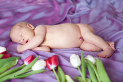 Portrait of  sleeping newborn baby in room Stock Images