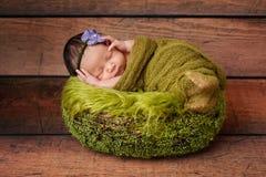 Portrait of a Sleeping Newborn Girl Stock Photo