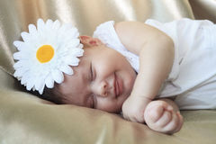 Portrait of sleeping and smiling baby girl. Cute baby girl with white daisy flower on the head. Little girl calmly sleeping and smiling royalty free stock image