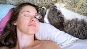 Portrait of a sleeping woman and a cat royalty free stock image