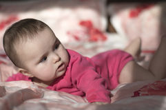 Portrait of  small baby girl Stock Photography