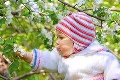 Portrait of small baby in spring garden Stock Photos