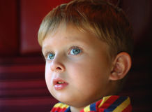 Portrait of the small boy. Small boy watching through the window Stock Photography
