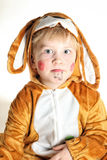 Portrait of the small boy bunny with droopy ears. Portrait of the small boy dressed for bunny with droopy ears and red face Royalty Free Stock Images