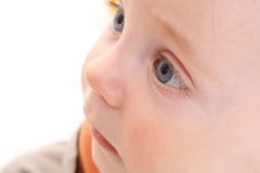 Portrait of the small child. Royalty Free Stock Photos