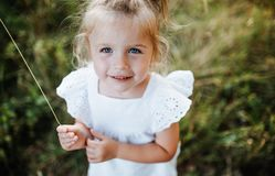 A portrait of small girl in sunny summer nature. A portrait of cute small girl in sunny summer nature royalty free stock photography