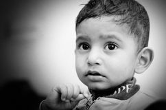 Portrait of small indian child Stock Images