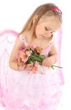 Portrait of the small princess in a pink dress Royalty Free Stock Photo