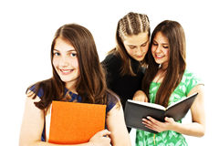 Portrait of smart student Royalty Free Stock Images