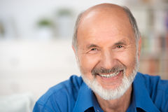 Portrait of a smiling attractive senior man. Close up portrait of a smiling attractive senior man looking directly at the camera with copyspace Royalty Free Stock Image