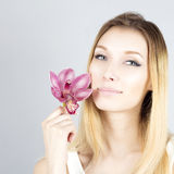 Portrait of smiling blonde with pink flower. Beauty face of woman. Stock Photo