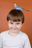 Portrait smiling boy with a parrot on his head Royalty Free Stock Images