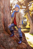 Portrait of smiling boy standing on tree trunk. At park Royalty Free Stock Photos