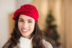 Portrait of a smiling brunette at christmas Stock Image
