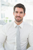 Portrait of a smiling businessman well dressed stock image