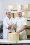 Portrait of smiling cheese makers binding new farmhouse cheddar cheese wheel with cheesecloth Royalty Free Stock Image