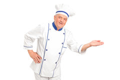 Portrait of smiling chef gesturing welcome. Isolated on white background Royalty Free Stock Photo