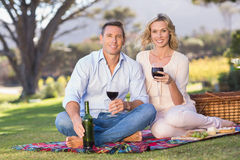 Portrait of smiling couple sitting on picnic blanket and drinking wine Stock Image