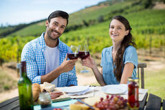 Portrait of smiling couple toasting red wine glasses while sitting at table royalty free stock photos