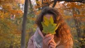 Portrait of smiling curly-haired caucasian girl hiding behind yellow leaf in autumnal park. stock image