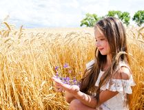 Portrait of smiling cute little girl child on field of wheat holding flowers royalty free stock photos