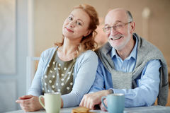 Portrait of Smiling Elderly Couple at Home Royalty Free Stock Photography