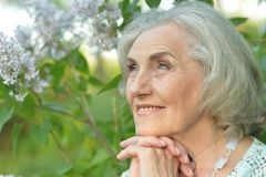 Portrait of smiling elderly woman posing in summer park. Smiling elderly woman posing in summer park royalty free stock photos