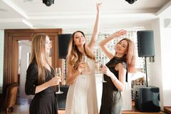Portrait of smiling friends holding glass of champagne stock image