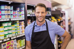 Portrait of a smiling handsome having a apron Stock Photos