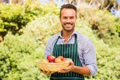 Portrait of smiling handsome man holding apple basket Royalty Free Stock Photography
