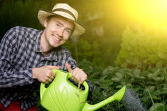 Portrait of smiling male gardener watering plants at greenhouse. Image with lens flare effect Royalty Free Stock Image