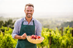 Portrait of smiling man holding apple basket Royalty Free Stock Photography