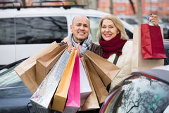 Portrait of smiling pleasant mature couple standing Stock Images