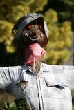 Portrait of smiling scarecrow Royalty Free Stock Photography