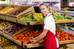 Portrait of smiling seller holding tomatoes Royalty Free Stock Photography