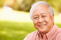 Portrait Of Smiling Senior Asian Man Sitting In Park Royalty Free Stock Image