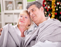 Portrait of smiling senior couple in Christmas  sitting at home Royalty Free Stock Photo