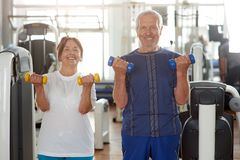 Portrait of smiling senior couple at gym. Happy elderly men and women holding dumbbells and looking at camera stock photos