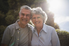 Portrait of smiling senior couple standing against tree. On sunny day Royalty Free Stock Photos