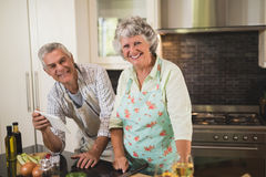Portrait smiling senior couple standing by kitchen counter. Portrait smiling senior couple standing by counter in kitchen at home Stock Image