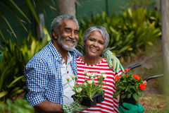 Portrait of smiling senior couple standing together in backyard Stock Photography