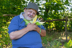 Portrait of smiling senior farmer with ripe ear of maize Royalty Free Stock Photo