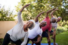 Portrait of smiling senior friends exercising with arms raised. On mats at park royalty free stock image