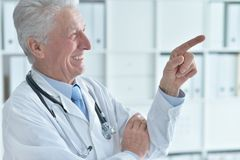 Portrait of a smiling senior male doctor stock image