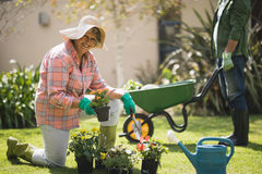 Portrait of smiling senior woman holding plant while kneeling in yard Royalty Free Stock Photo