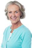 Portrait of a smiling senior woman Stock Photography
