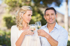 Portrait of smiling standing couple drinking wine and toasting Stock Photo