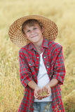 Portrait of smiling teenage farm boy is checking oat seeds in cupped palms at harvest time field Royalty Free Stock Photography